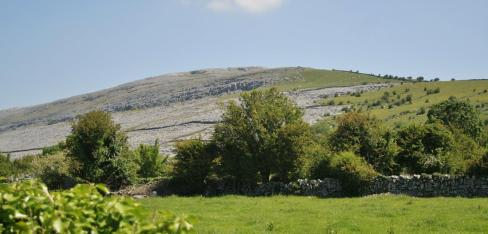 Bare Burren rock