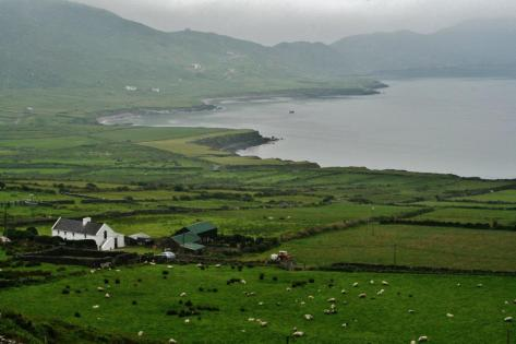 Along the Irish West Coast