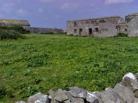 Ruins (8)